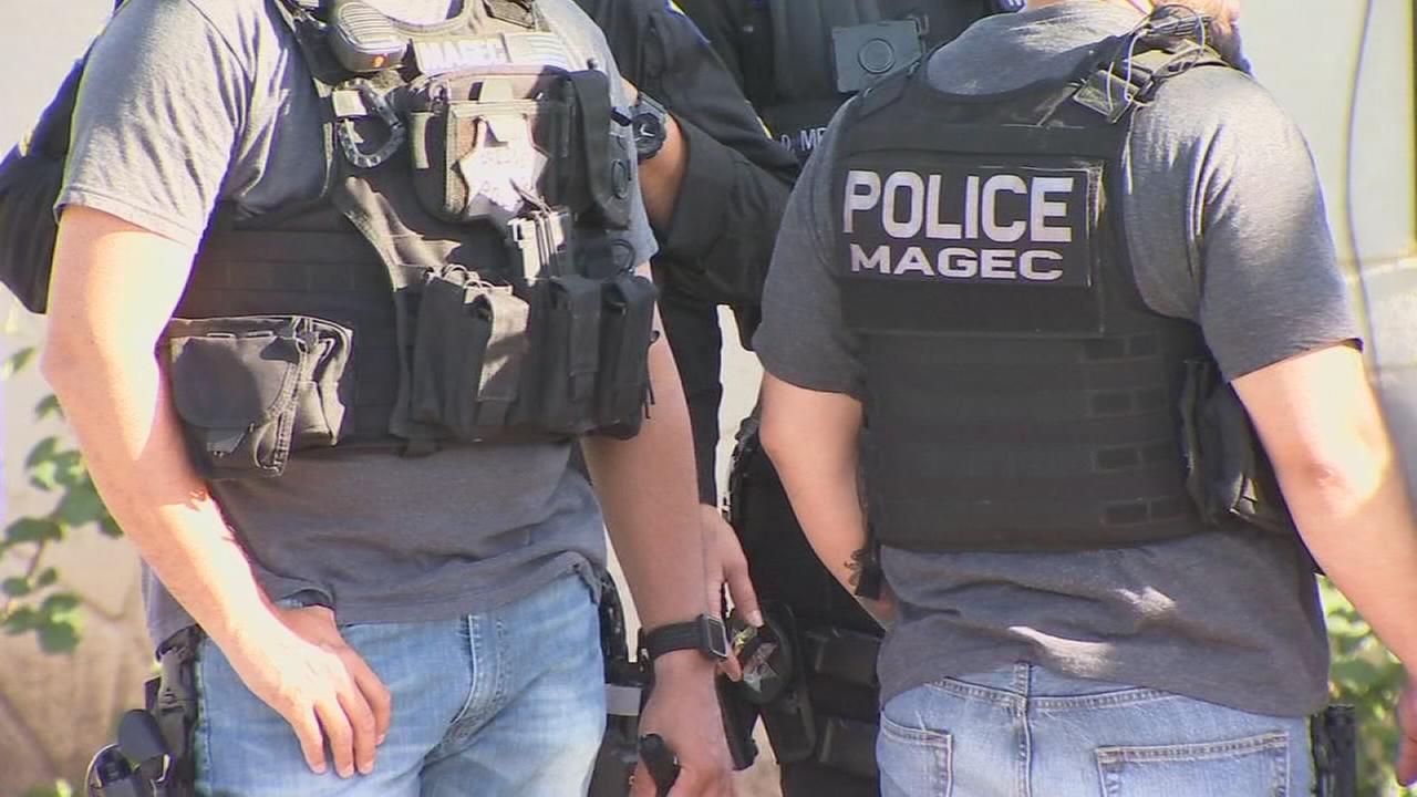 Bulldog gang members arrested