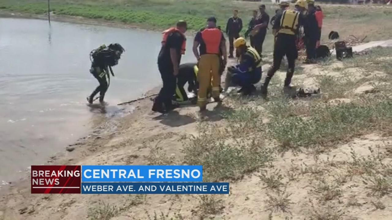 Dog drowns after SUV crashes into ponding basin in Central Fresno
