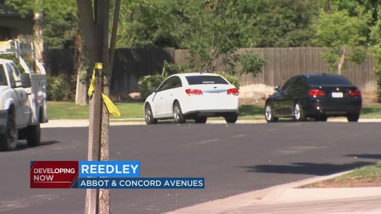 Homicide investigation underway in Reedley after man found shot to death in his car