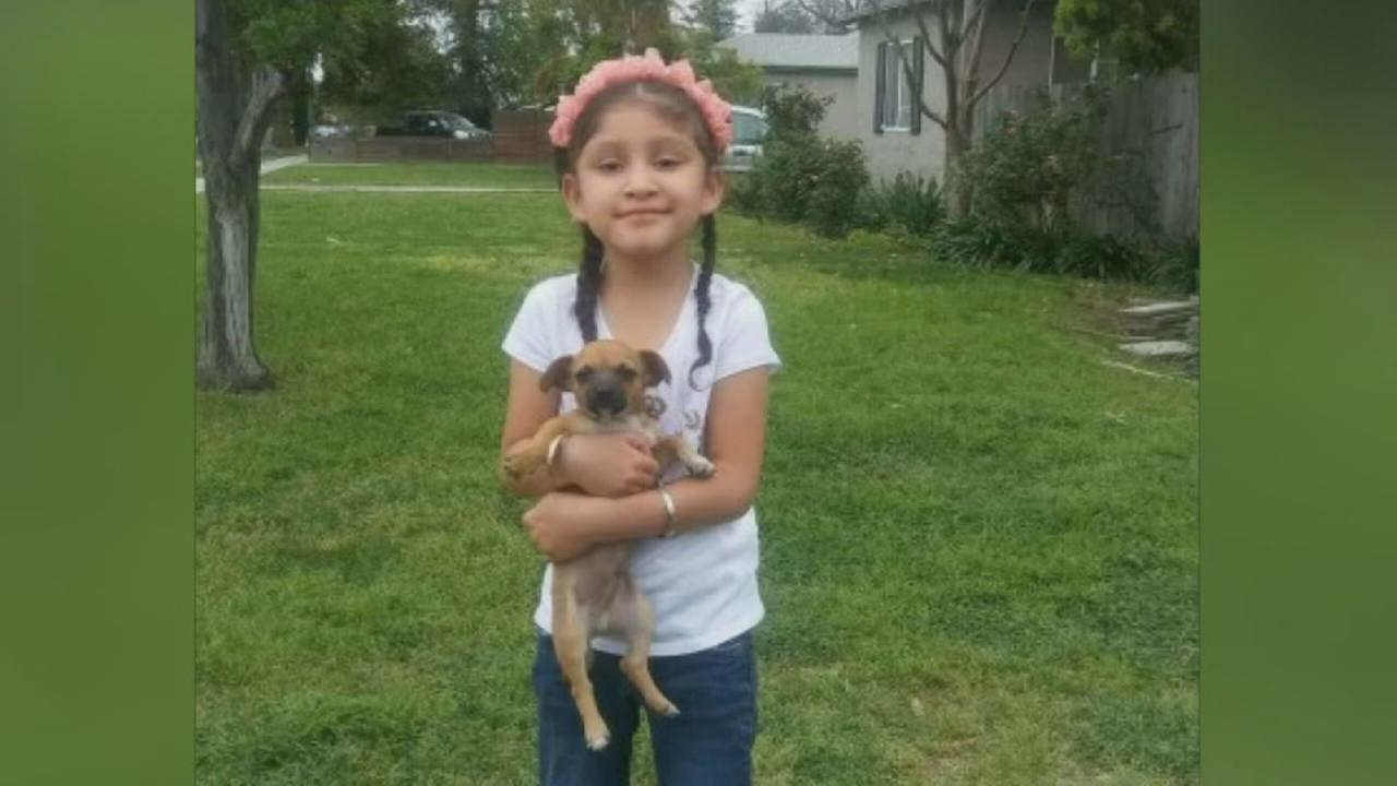 Familys search for stolen therapy dog continues