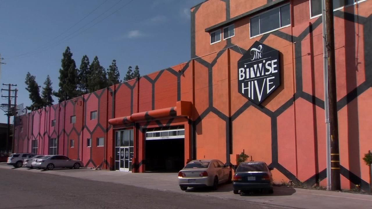 Grand opening of Bitwise Hive creating a buzz a around town