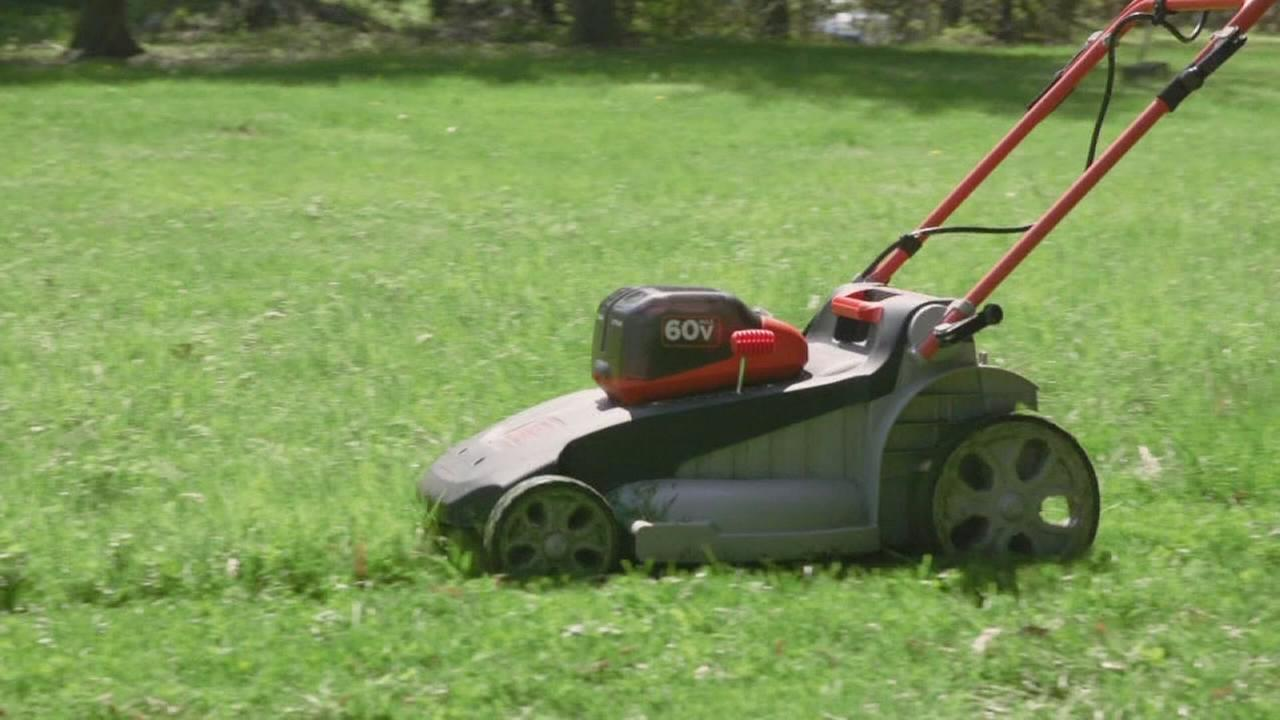 Best electric mowers