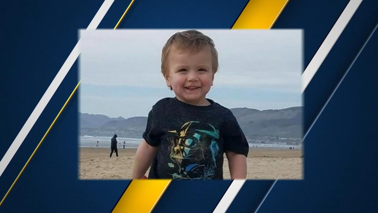 Two-year-old boy that accidentally shot himself laid to rest
