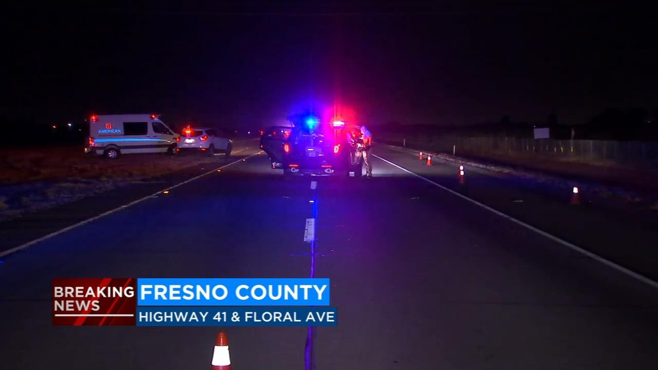 Pedestrian dies after being hit by vehicle on Highway 41