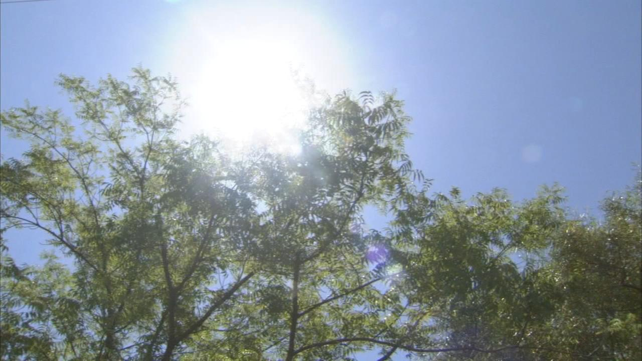 Doctors urge special precautions during extended heat wave
