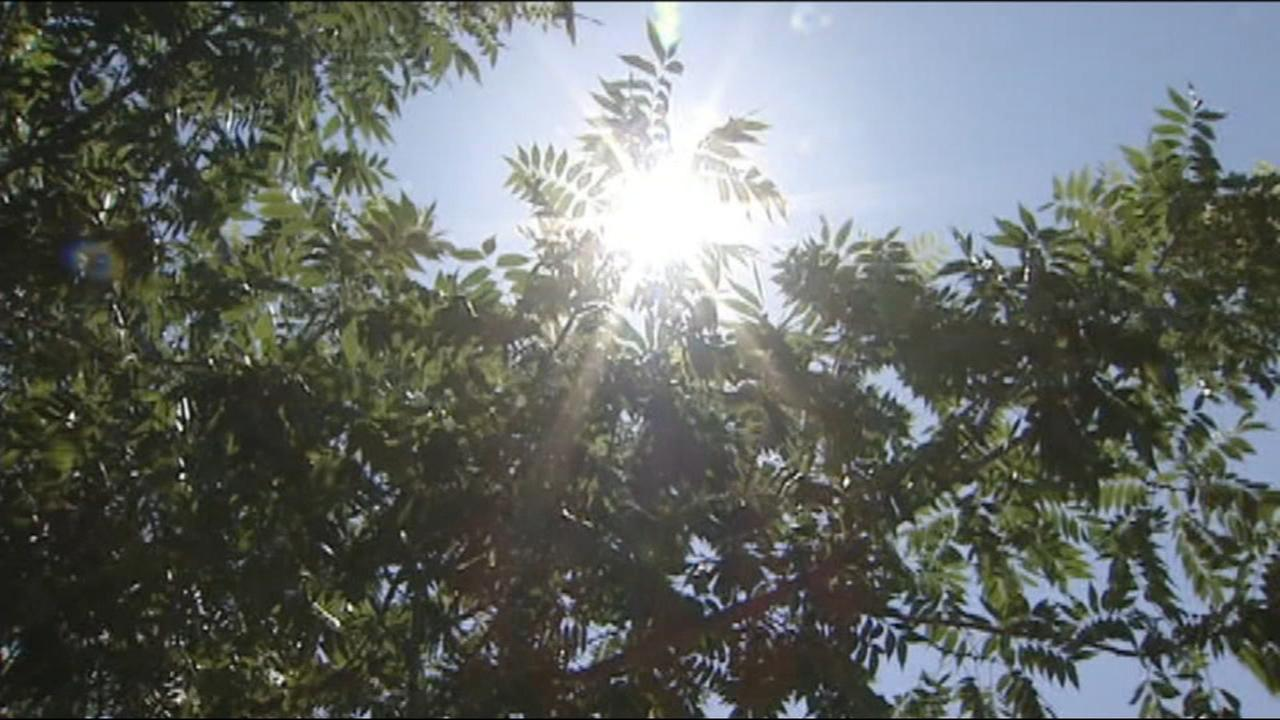 City of Fresno and Fresno Unified offering ways to beat the heat