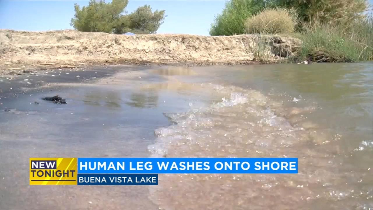 5-year-old girl finds human severed leg in Bakersfield lake
