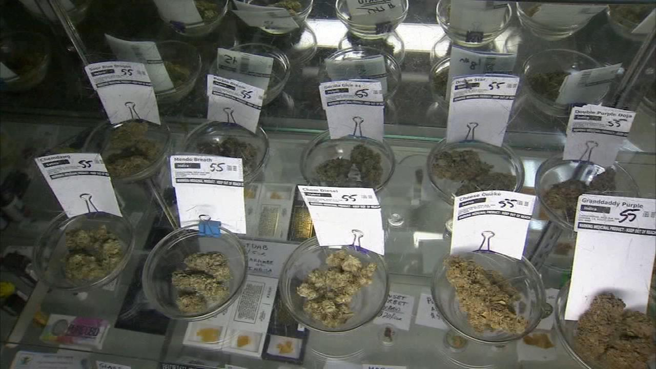 Porterville to talk pot business possibilities