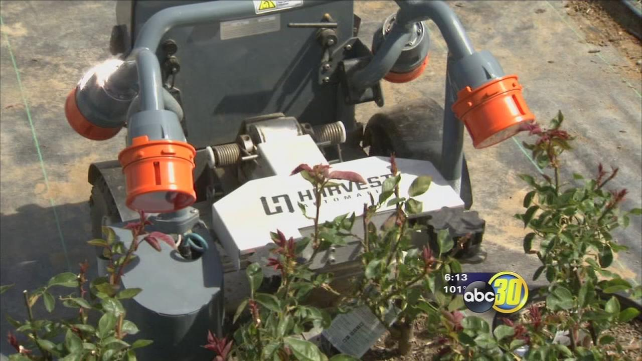 Nursery turns to high tech robotic help