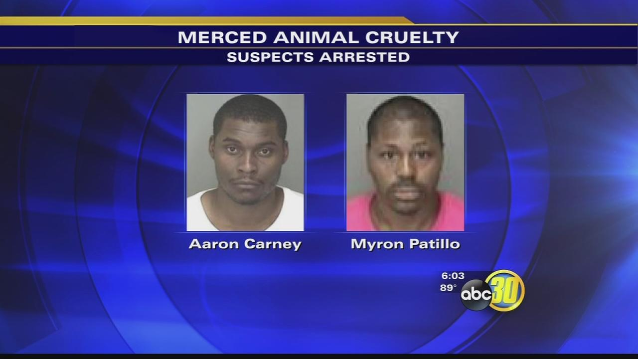 2 men accused of attacking dog with machetes arrested in Merced
