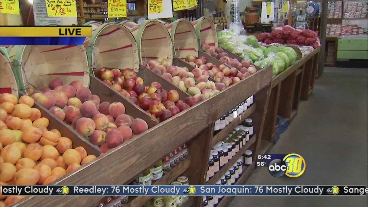 Fresno County Fruit Trail opens has harvest season starts