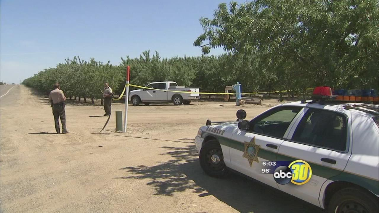 Authorities investigate homicide in Fresno County orchard
