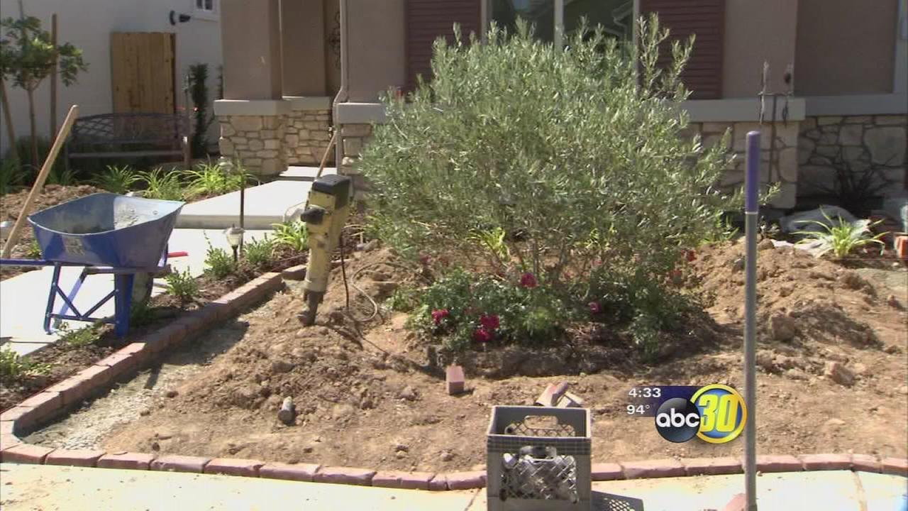 Valley landscaping businesses thriving in drought, lawn care companies surviving