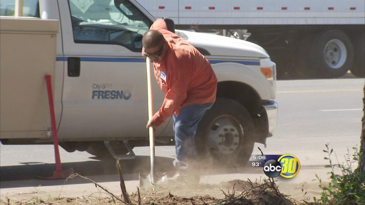 Fresno starts on new drought landscaping test project downtown