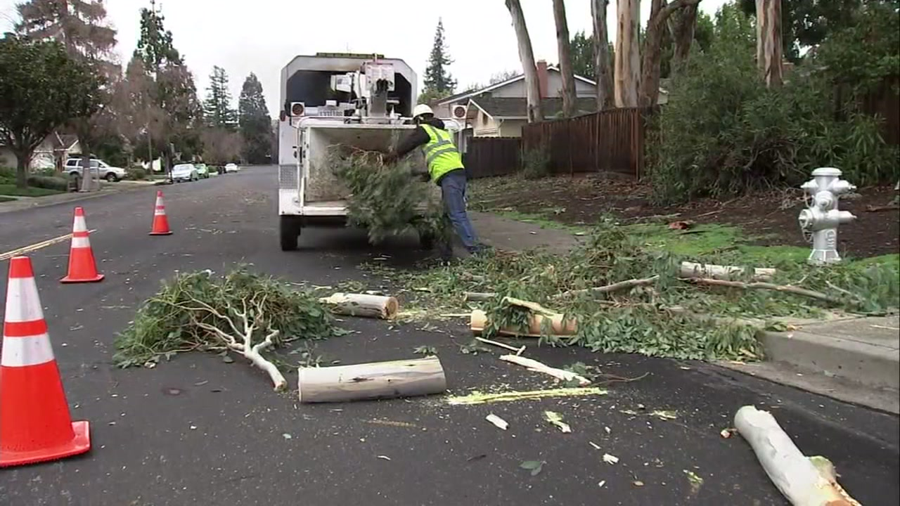 Crews work to clean up fallen trees in the South Bay on Thursday, Jan. 17, 2019 following a massive storm.