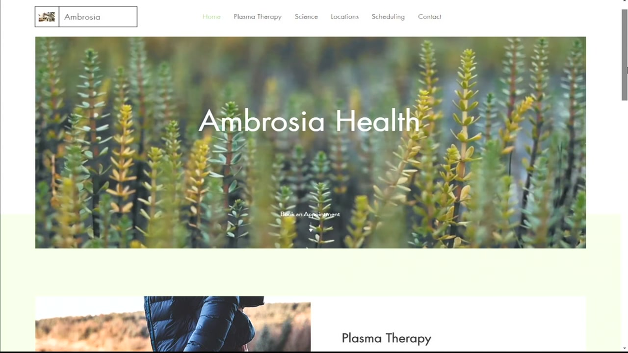 Ambrosias website is pictured.