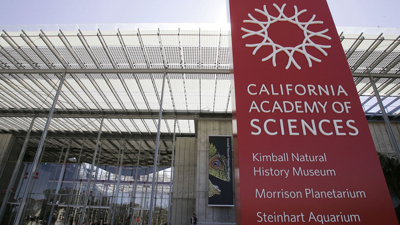 The new California Academy of Sciences building is seen in San Francisco, Thursday, Sept. 18, 2008.