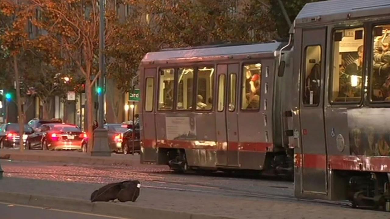 Muni light rail cars in San Francisco