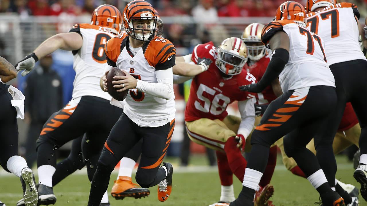 Cincinnati Bengals AJ McCarron (5) against the San Francisco 49ers during the second half of an NFL football game in Santa Clara, Calif., Sunday, Dec. 20, 2015. (AP Photo)