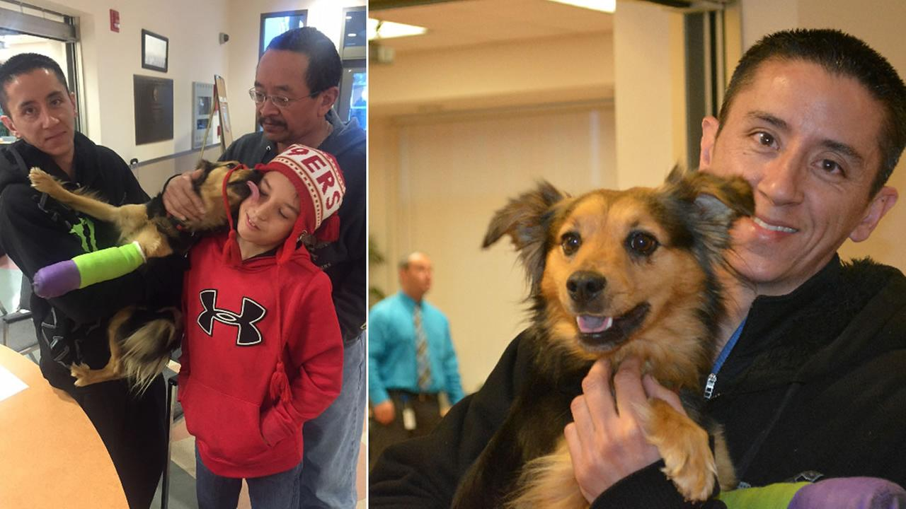 Bella the Australian shepherd was reunited with her family Wednesday, January 6, 2015 at Contra Costa Animal Services in Martinez, Calif.
