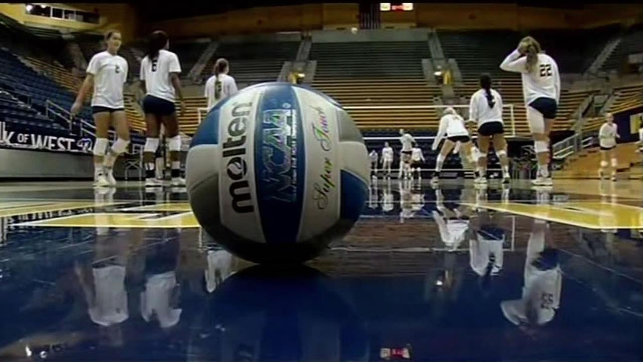 This image shows the University of California Berkeley volleyball team.