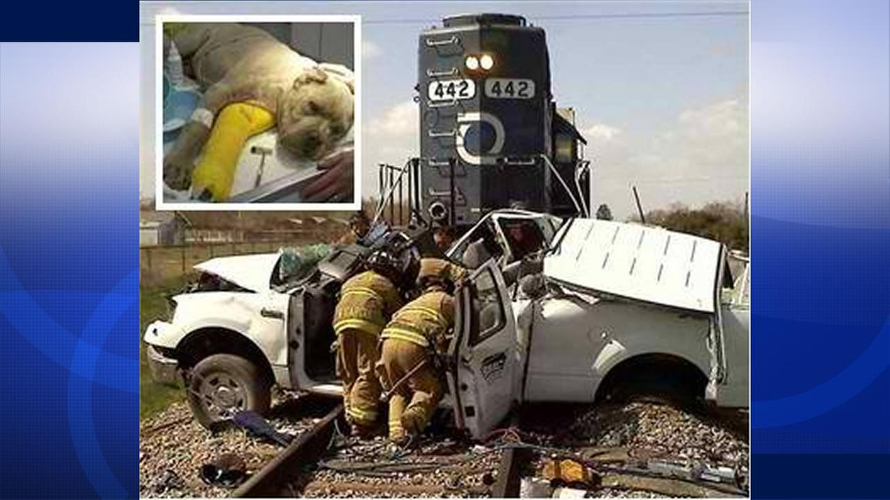 Man, dog rescued from Central Valley crash