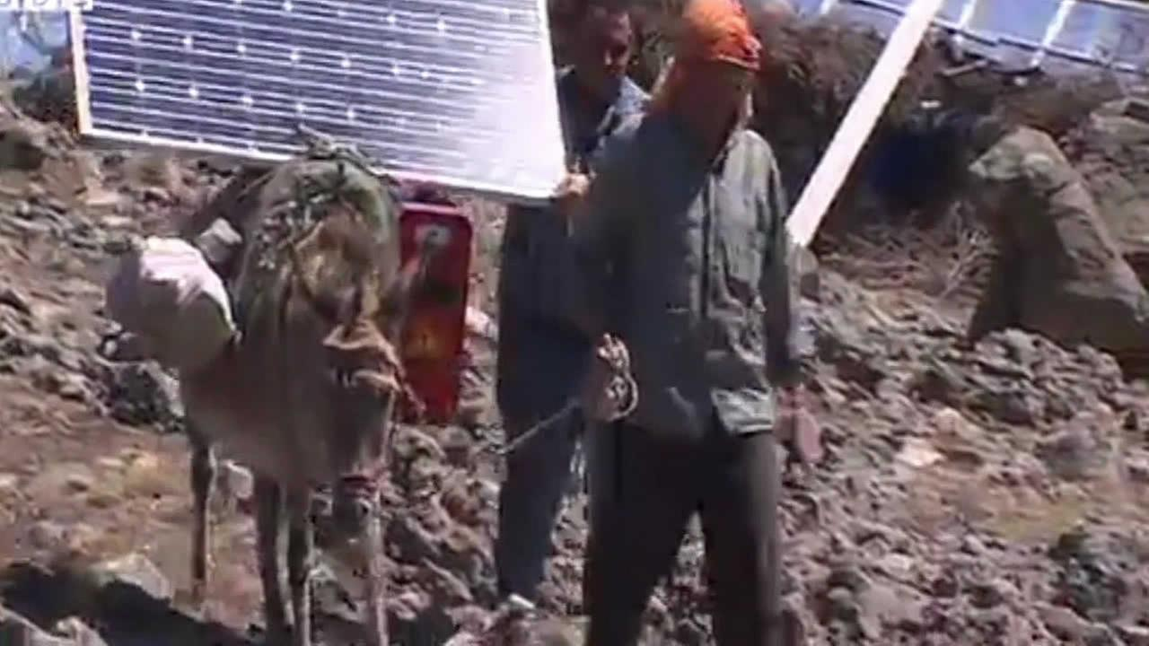 Donkey with solar power strapped to their backs