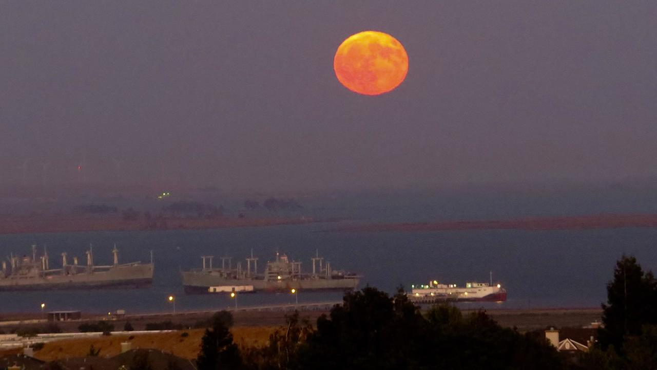 ABC7 viewers shared their photos of the harvest moon on Friday, September 16, 2016. This image from Paula D. was taken in Benicia, Calif.