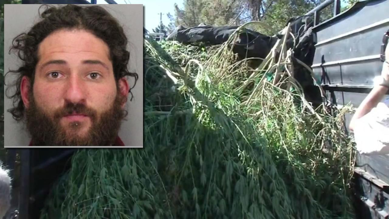 This image shows Yariv Dorr, the man deputies arrested in connection with a marijuana grow operation near the Loma Fire in the Santa Cruz Mountains.
