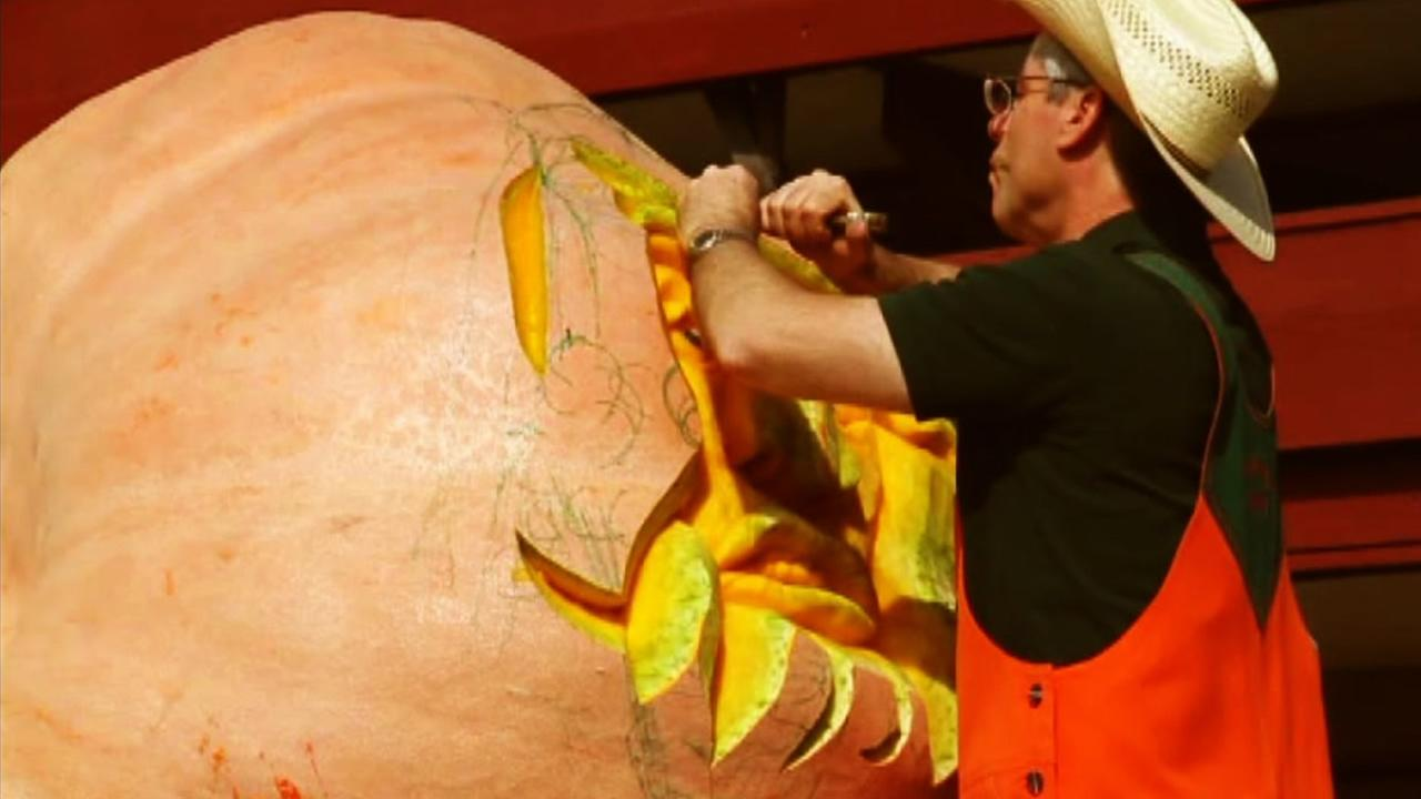 This Half Moon Bay Art and Pumpkin Festival begins on Saturday, October 15, 2016.