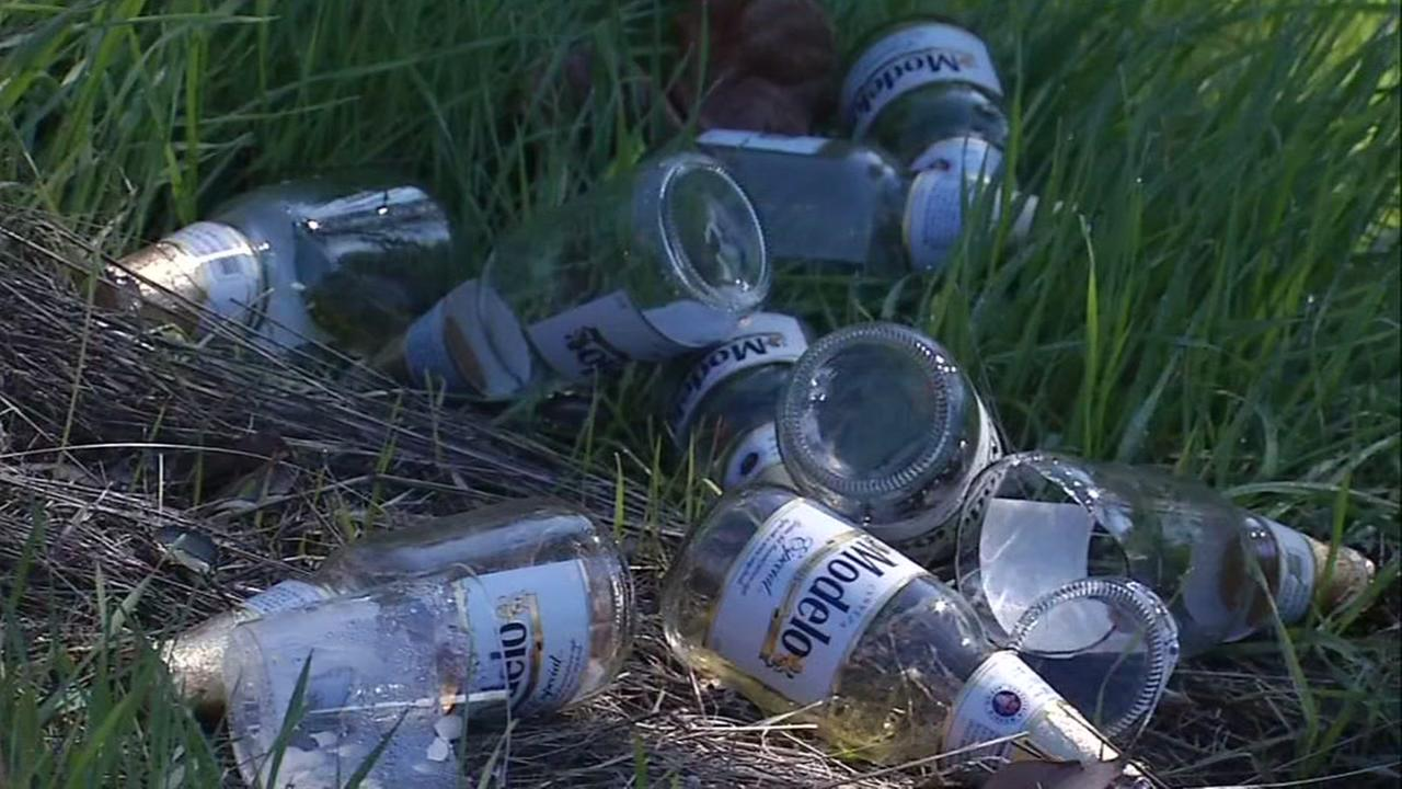 Bottles of Modelo Negro appear at the site of a car crash that killed two in San Jose, Calif. on Dec. 26, 2016.