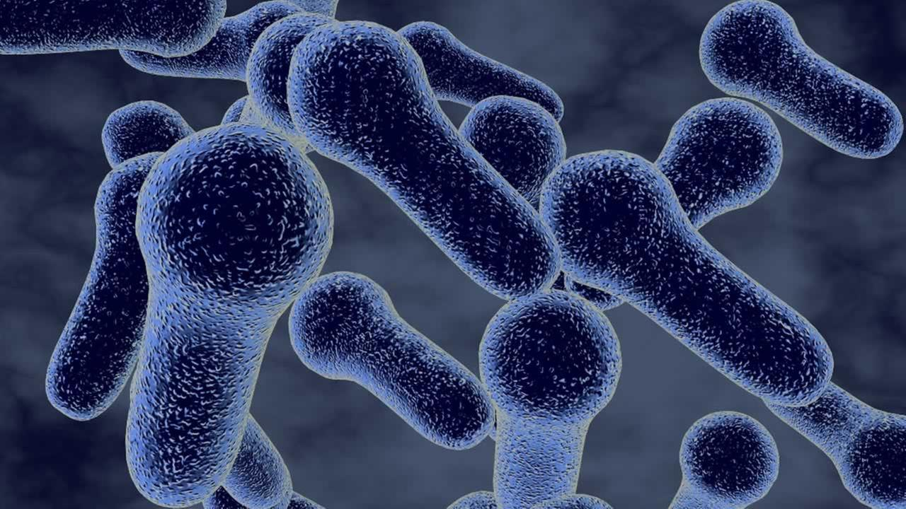 This is a 3D illustration of Clostridium bacteria, which causes botulism.