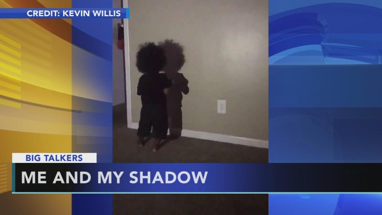 Adorable toddler boxes with his own shadow