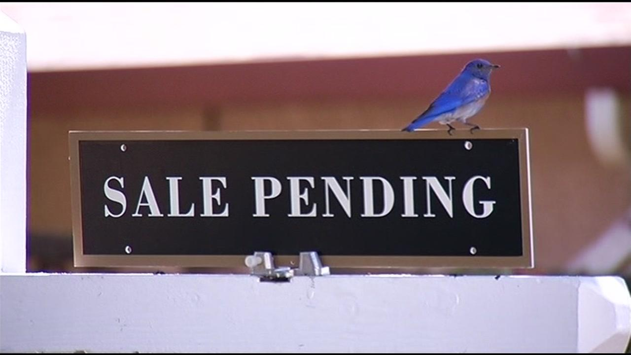This is an undated image of a sale pending sign outside of a home.