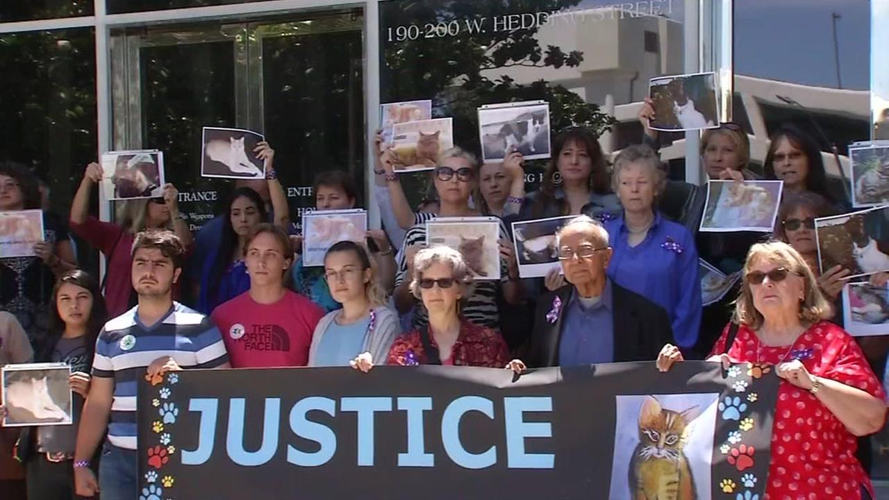 Residents of San Jose, Calif. gather on Friday, July 14, 2017 to rally during the sentencing of a man accused of torturing and killing cats.