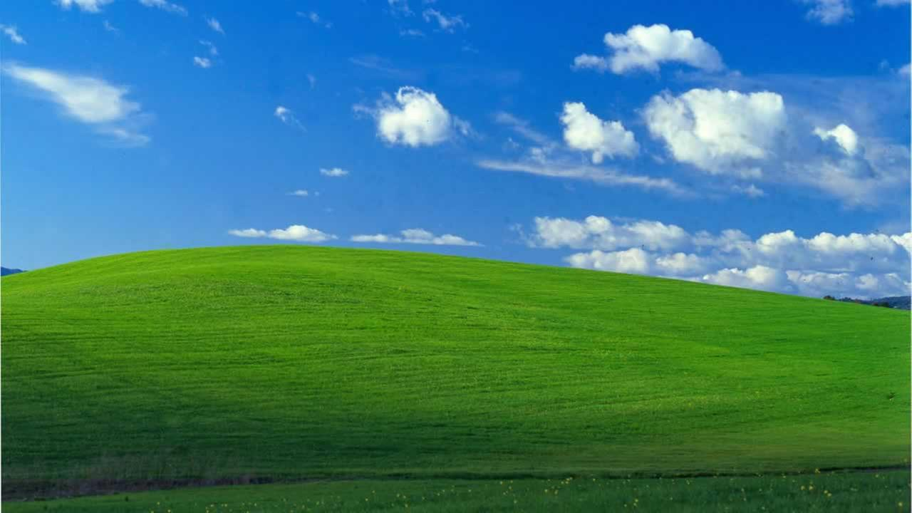 Windows XP Background Is Photo Of Sonoma Hillside