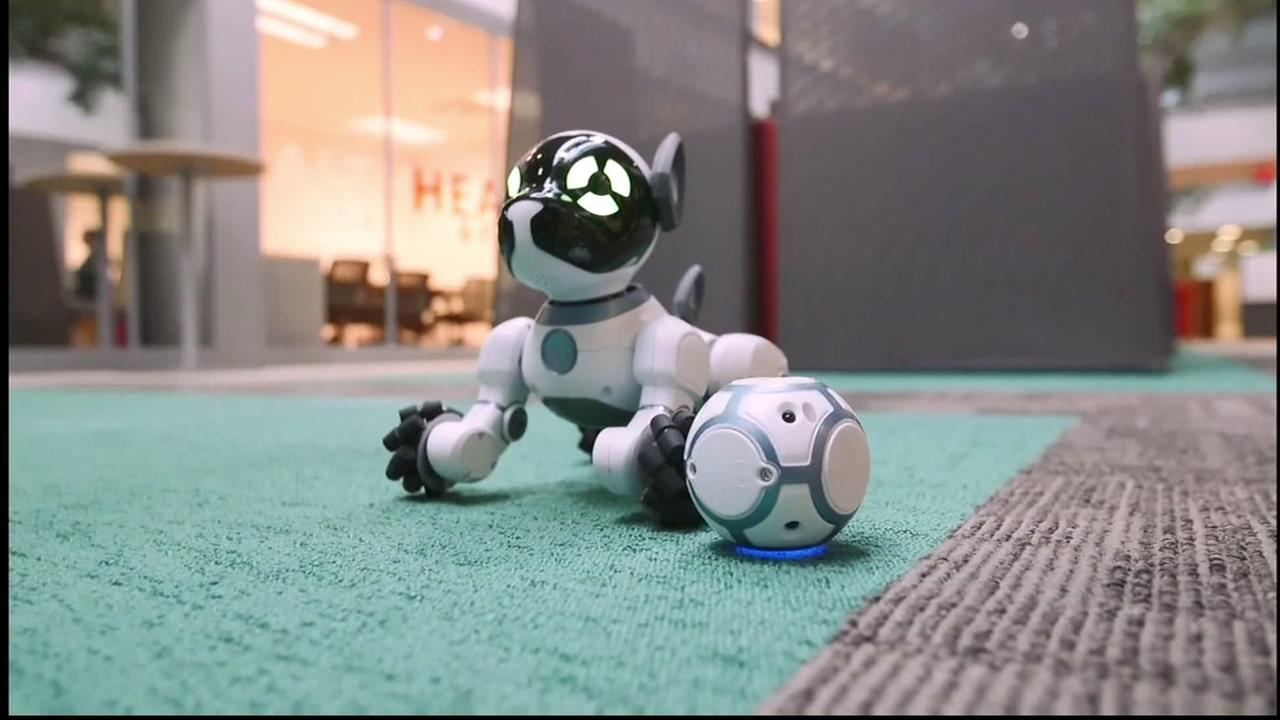 This is an undated image of a robot.