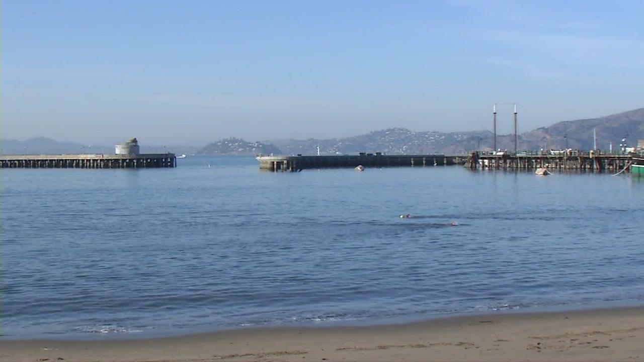 Aquatic Park appears on Friday, Dec. 12, 2017 after being closed due to two separate sea lion attacks.