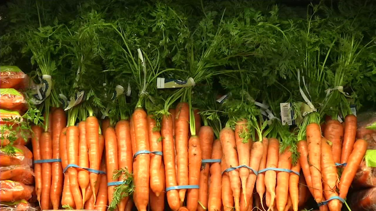 This is an undated image of carrots.
