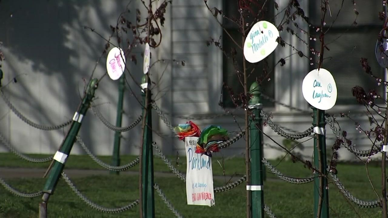 A memorial for the victims of the Parkland school shooting popped up in Duboce Park in San Francisco.