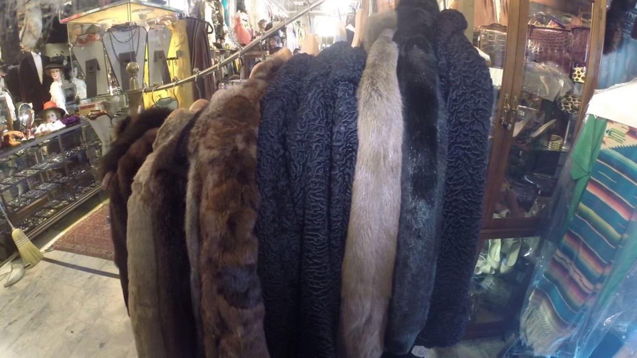 This is an undated image of fur coats.