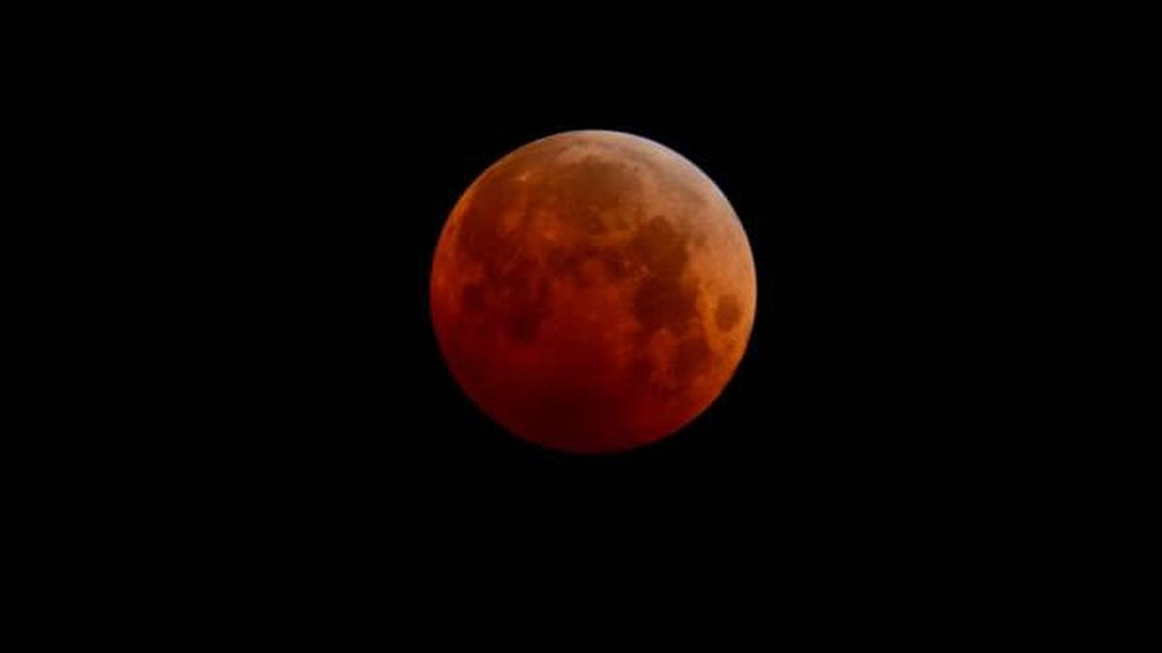 Blood Moon uReport picture