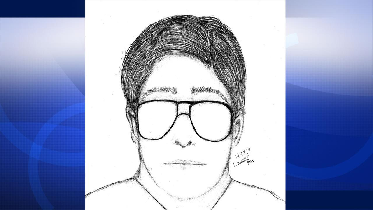 Drawing of suspect