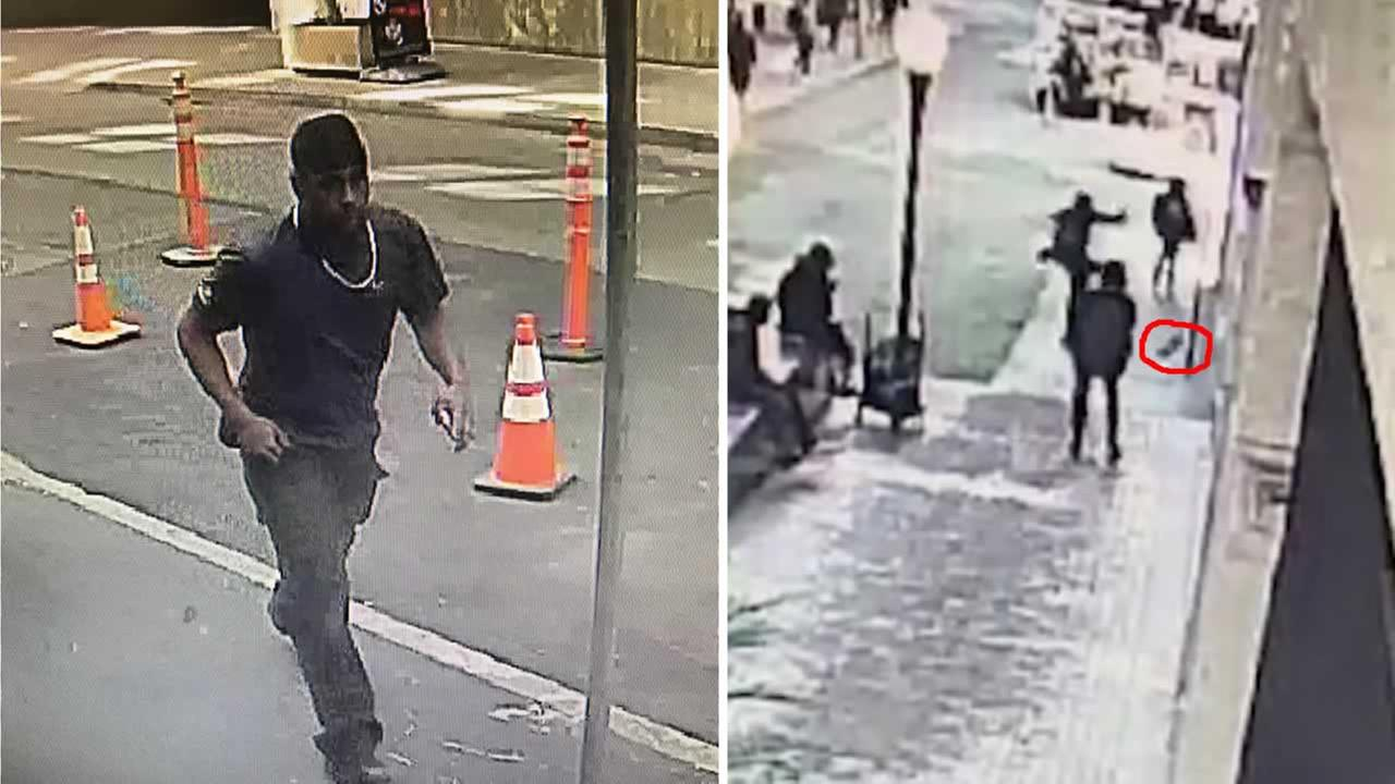 Surveillance video captured a suspect kicking a puppy in San Francisco.