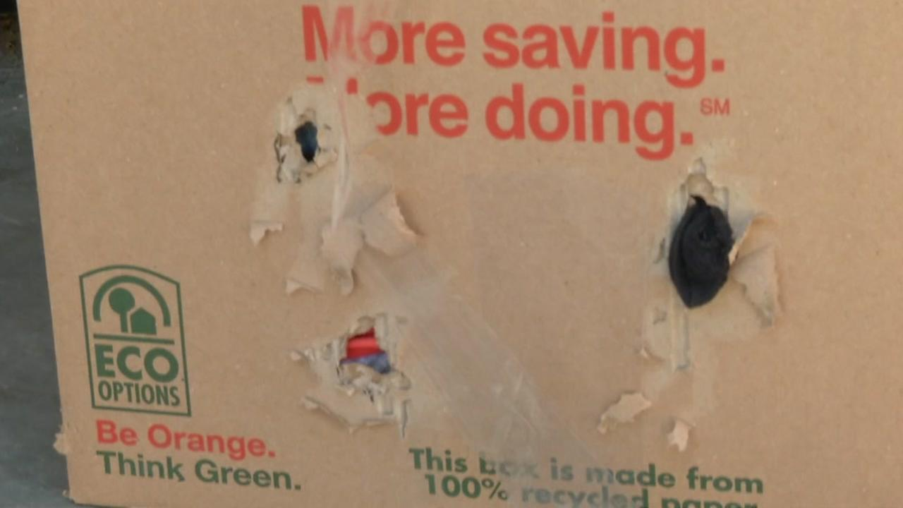 Damage from rodents is seen on a storage box in this undated image.