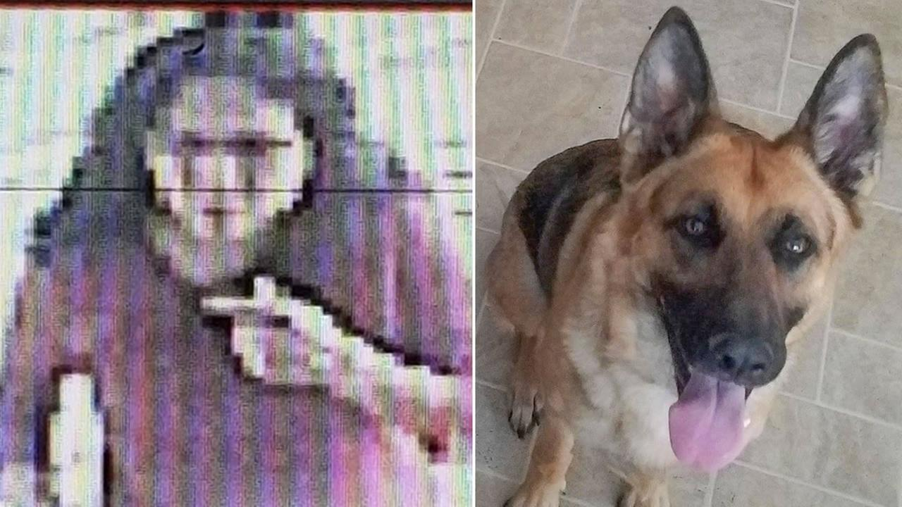 This surveillance photo shows a woman who witnesses say took Dana Martinezs dog, Nala.