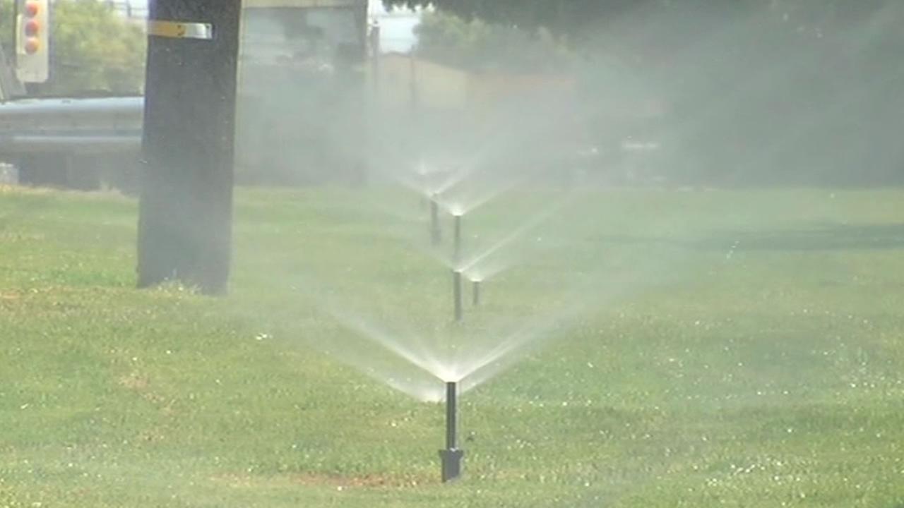 Sprinklers watering the grass
