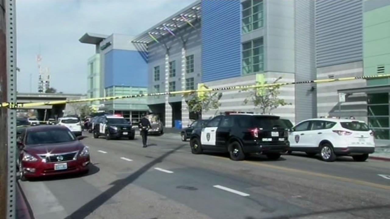 A  woman who police say pointed a gun at Home Depot  security guards and tried to carjack three people was shot and killed by Emeryville police on Hollis Street on Feb. 3, 2015.