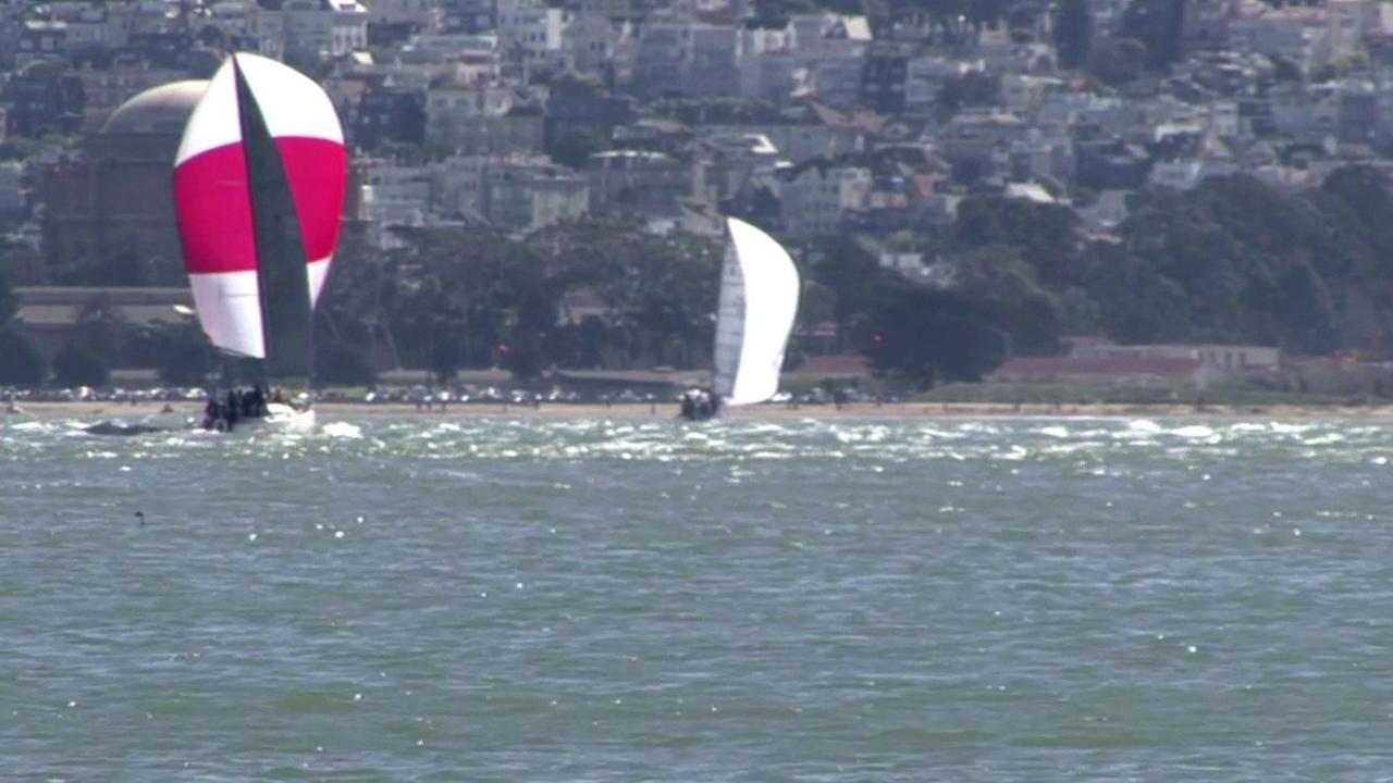 Sailboats in the San Francisco Bay.