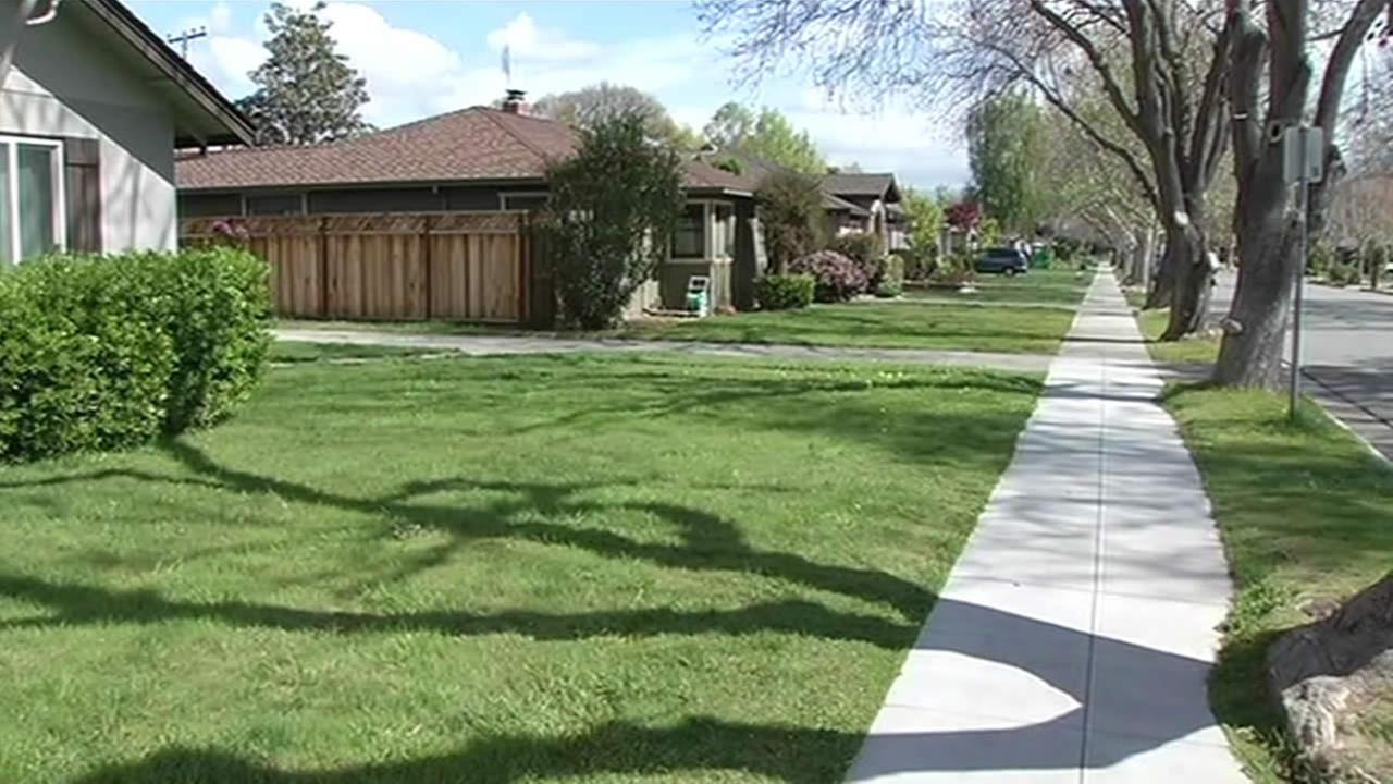Green lawns are seen in San Jose, Calif. on March 24, 2015.